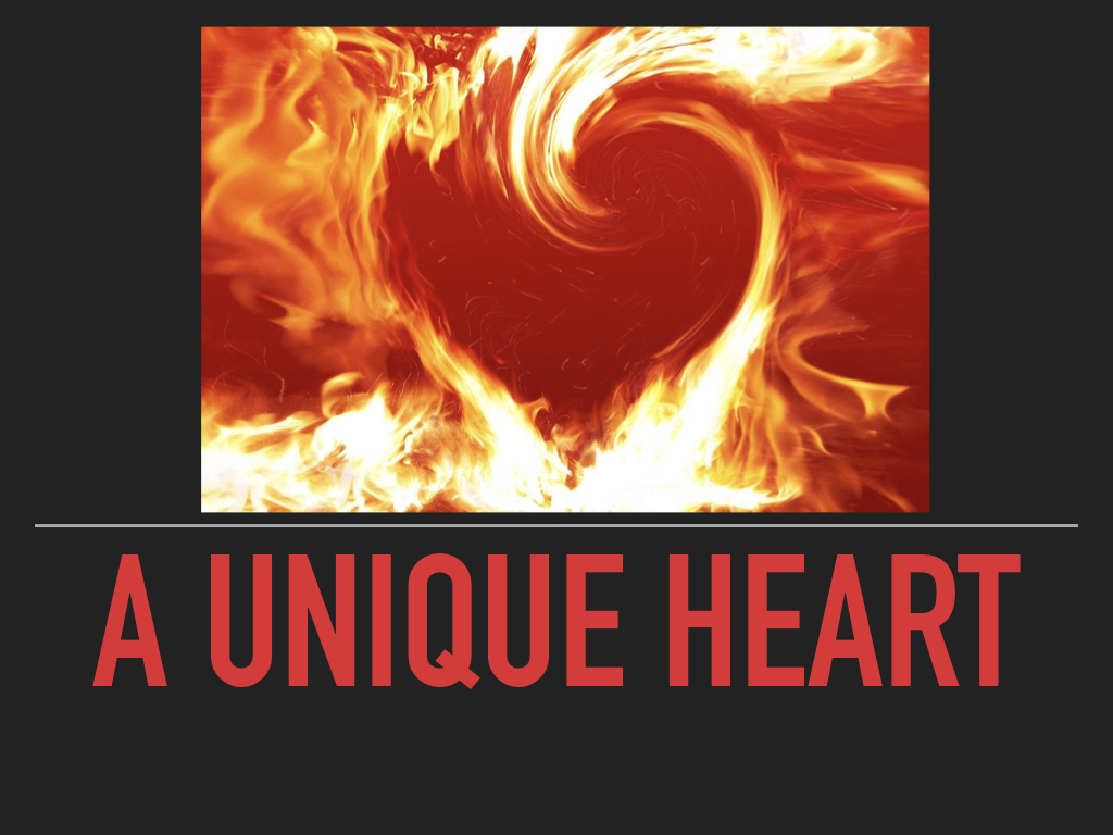 A Unique Heart  by Missy Grinnell