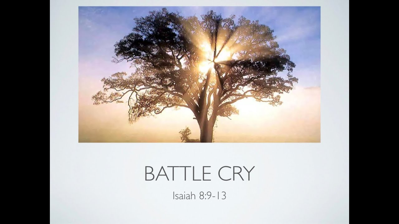 Battle Cry  by Missy Grinnell